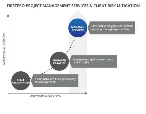 project-services-risk-mitigation